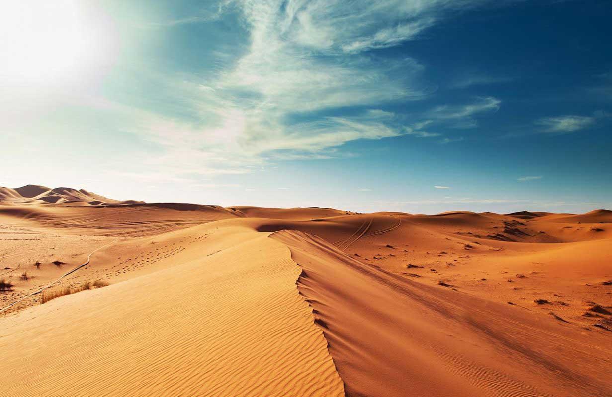 Excursion aux Dunes